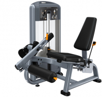 PRECOR Discovery Series Selectorised Line Leg Extension DSL605