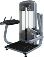 PRECOR Discovery Series Selectorised Line Glute Extension DSL618