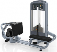 PRECOR Advanced Discovery Line Diverging Low Row DSL324