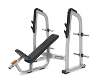 PRECOR Discovery Olympic Incline Bench DBR410