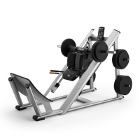 PRECOR Discovery Series Plate Loaded Line DPL603