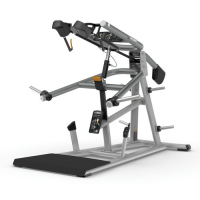 PRECOR Discovery Series Plate Loaded Line DPL624