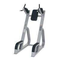 PRECOR/ICARIAN Icarian Benches - Racks Vertical Knee Up/Dip CW702