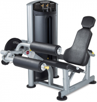 TRUE FITNESS Force SD1000
