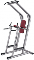 LIFE FITNESS Signature Bench-Rack Chin/Dip/Leg Raise SCDLR