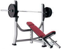 LIFE FITNESS Signature Bench-Rack Olympic Incline Bench SOIB