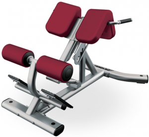 LIFE FITNESS Signature Bench-Rack Back Extension SBE s